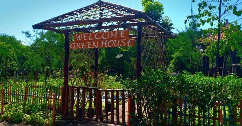 Kebun Sayur di Hutan Mangrove